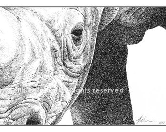 Rhino Pen and Ink Drawing Print Signed