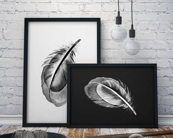 Stylish Feather Print A4, A3 & A3+