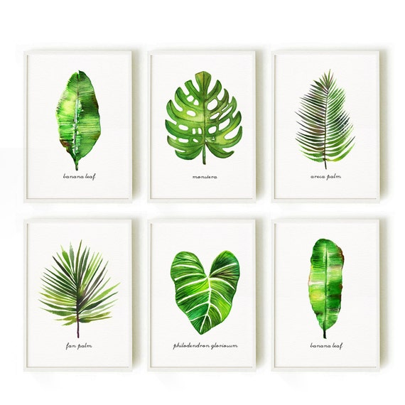 Watercolor Green Plants Monstera Nature Posters And Prints: Palm Leaf Print Watercolor Art Botanical Print Set Tropical