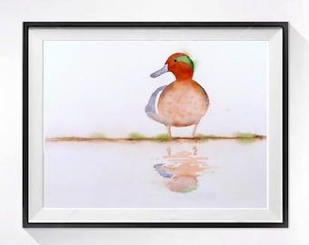 Duck Painting, bird illustrations,Duck art print, Watercolor painting, Wild bird art, Wildlife Art, Nature artwork, woodland painting