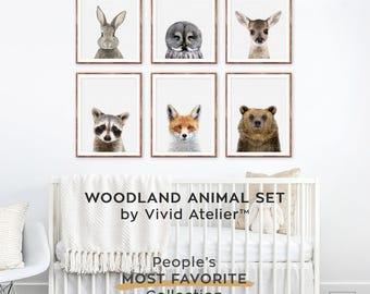 Woodland Nursery Set, Woodland Nursery Decor, Print Set of 6, Woodland Animal Nursery Wall Art, Baby Girl Nursery Forest Animals, Printables