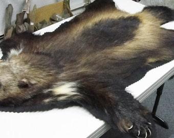 Wolverine Rug