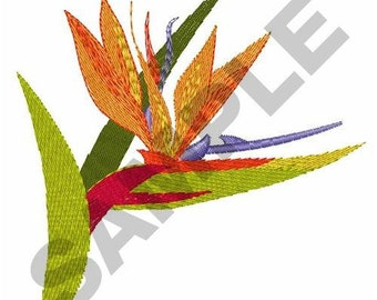 Bird Of Paradise - Machine Embroidery Design