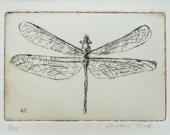 original etching of a dragonfly
