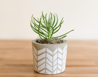 Mother's day, Mother's day gift ideas, Painted Concrete Planter, Concrete planter, Succulent Planter, Succulent Plant Pot,