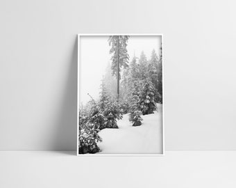 Forest Digital Print Instant Download Printable Decor Forest Art Nature Print White Forest Poster Black And White Forest Print Photography