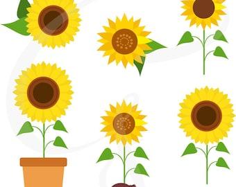 Sunflower clipart, sunflower vector, sunflowers, flower, plants, commercial use, scrapbooking, digital image, sunflower digital clipart
