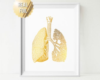 Anatomical Lung Print - Human Anatomy Lungs - REAL GOLD FOIL Print - Gold Med Decor - Gift for Doctor - Gift for Nurse - Anatomy Print Gold