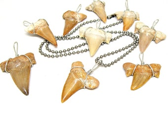 Fossil Shark Tooth 6.3mm CAMO Ball Chain Necklace Made in USA 20, 24, 30 Inches Large Sharks Teeth 7036M