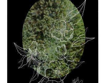 Hellebore Macroscape Print