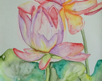 Original Watercolour Waterlily Wall Art