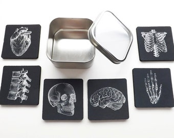 Doctor Medical School Graduation Gift Coaster goth future male nurse practitioner physician assistant anatomical heart skeleton med student