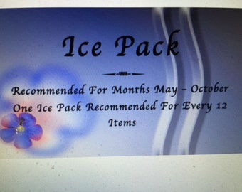 ICE PACK - RECOMMENDED One Ice Pack Per Dozen Ordered - Summer Shipping