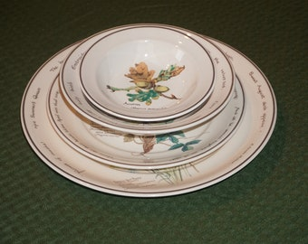 The Country Diary of an Edwardian Lady by Noritake, Ireland/ 16 Pieces/ 4 Place Settings.