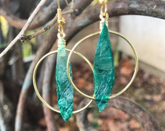 Gold hoop with kombucha leaf