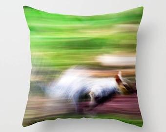 Squirrel pillow, squirrel cushion, green cushion, green pillow, nature, throw pillow, scatter cushion, pillow cover, photography, unique