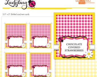 Blank Buffet Labels - Ladybug Printables - Tent Cards - Place Cards - DIY - Do-It-Yourself Printable - Pink Ladybug - Instant Download