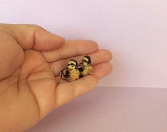 Miniature Duckling, Dollhouse Duckling, Handmade Duckling, Clay Duckling, Mini Duckling, Miniature Animal , 1 12 scale duckling
