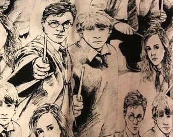Box Zipper Bag: Harry potter