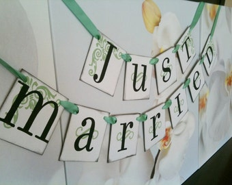 Just Married Banner/ Wedding Sign / Wedding Garland and Banners / Custom Colors / Photo Prop/ Works On a Car