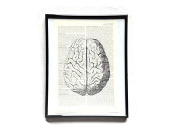Brain mind Anatomy vintage art print encyclopedia old book pages image poster