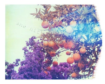 Fruit Print Oranges and Purple Polaroid Flowers 8x10 inch Fine Art Print-Signed by Artist