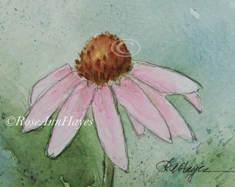 Pink Coneflower Watercolor Painting Original Wildflower Flower Floral Garden ACEO Botanical Gift