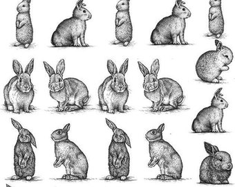 Vintage Animal Rabbits - Ceramic Decals- Enamel Decal - Fusible Decal - Glass Fusing Decal ~ Waterslide Decal - 93755