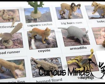 Busy Bag:  Desert Animal Match Educational Game