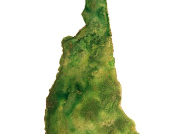 New Hampshire Topography Print