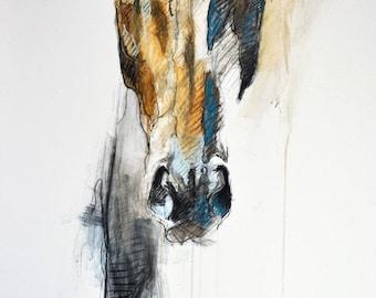 "8""x12"" - ""Alert VIII"" Photo print of a Horse Head Drawing"