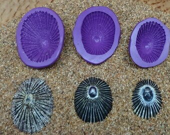Silicone Flex Molds - Set of 3 Opihi Limpet Shells - Hawaii Shells - Cast your own with Candy, Chocolate,  Polymer Clay, Resin, PMC