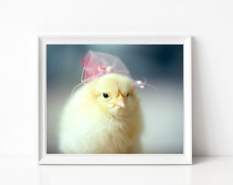 Chicks in Hats Photo Print 8x10 Chicken Wearing A Pink Miniature Fascinator Animal Photograph
