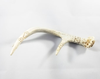 Hand Drawn and Burned Antler Shed