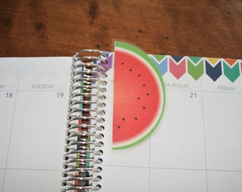 Watermelon Fruit Coil Clip In Laminated Bookmark Page Marker / Erin Condren, Limelife, Plum Paper Planner