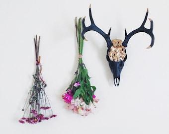 SALE Painted 8 point Whitetail Deer Skull // Gold Matte Black Deer Skull //