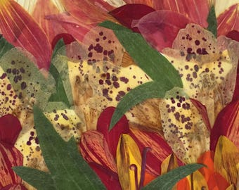 "Flower 02.17 Giclee Print 11""x14"""