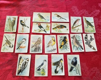 Useful Birds of America Trading Cards, Vintage Bird Cards, Arm & Hammer and Cow Brand, Church and Dwight Litho in USA All Grocers, M E Eaton