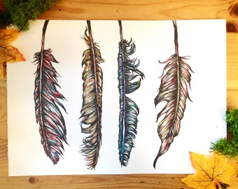 Original artwork, feathers illustration.