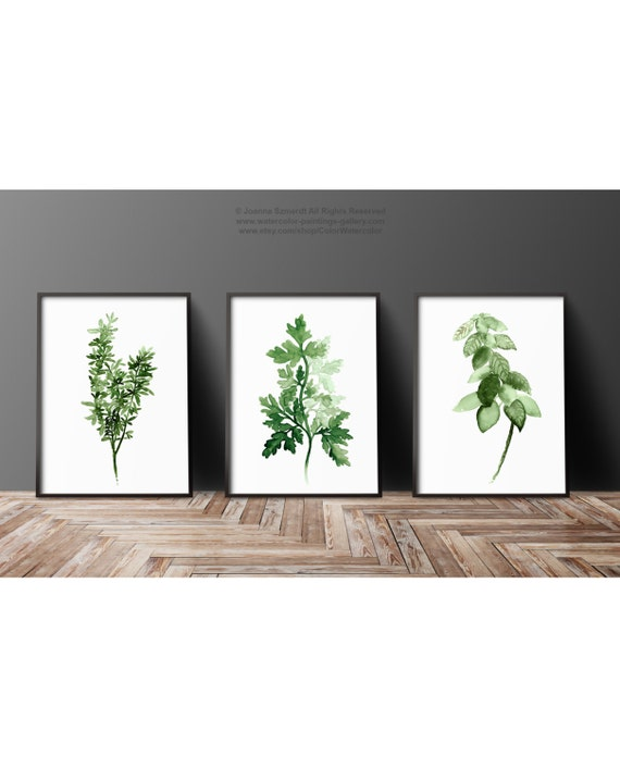 Herbs Set Dining Room Wall Print Thyme Botanical Poster
