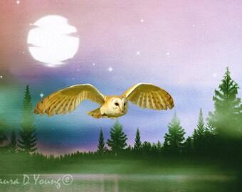 Barn Owl Flying, Barn Owl Photo, Bird Photography, Owl at Night, Full Moon, Fine Art Photography, Bird Wall Art, Owl Art Print, Owl Closeup