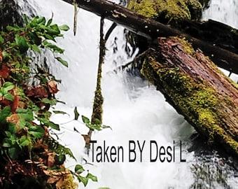 3 images for Watson Falls, Oregon