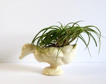 Vintage Ceramic Duck Planter - White Duck Figurine - Farmhouse Decor - Country Home Decor - Mid Century Pottery - Flower Vase Succulent Pot