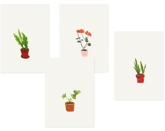 Ensemble van 4 kaarten «Planten»