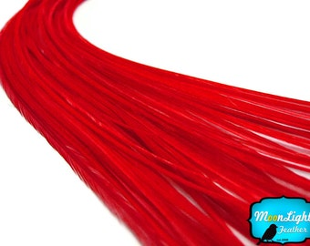 Red Feathers, 10 Pieces - SOLID RED Thin Long Rooster Hair Extension Feathers : 325