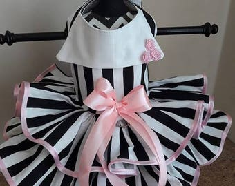 Dog Dress  black and white stripes  with pink trim