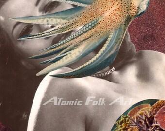 Cephalopod Affair