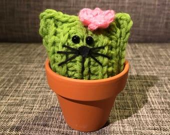 Wilma - Crochet Pussy Cactus