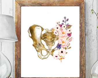 Pelvis Art, Anatomical Print, Physical Therapy Gift, Chiropractor Print, Medical Anatomy Art Doctor Gift Orthopedic Art Medical Office Decor