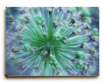 Wood Sign: Teal And Blue Floral Art, Wood Plank Flower Art, Chives Photography, Teal and Blue Floral art on Palet